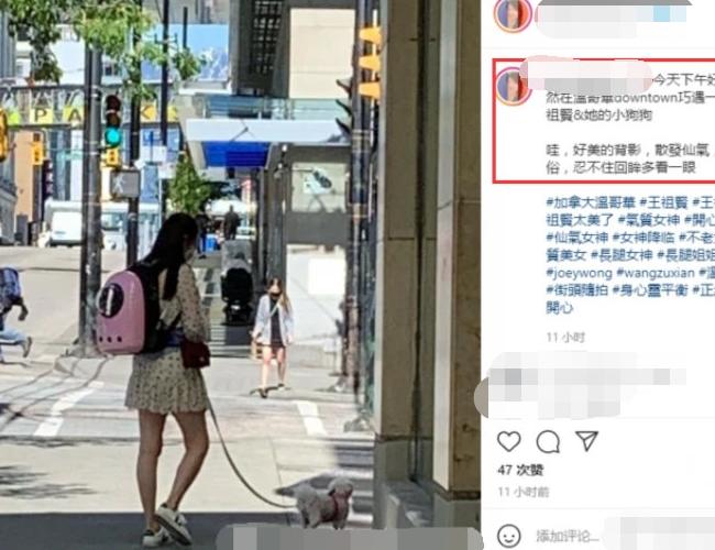 54歲王祖賢街頭遛狗被偶遇!穿短裙小腿纖細,一頭黑髮仙氣十足