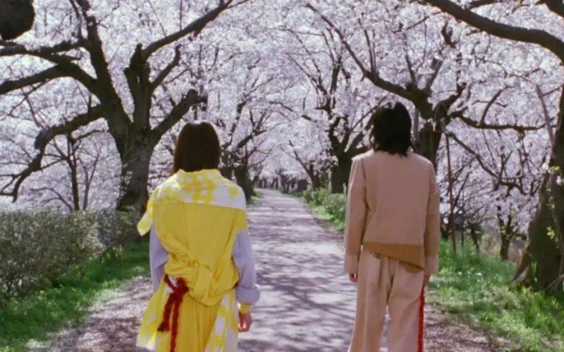 13部日本電影中的春天,太美了