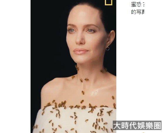安吉麗娜·朱莉為「世界蜜蜂日」拍攝的寫真幕後(視頻)
