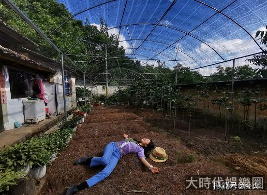 37歲江一燕躺農田裡拍照  曾被傳隱婚生子